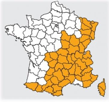 NIEUWE verplichting winterbanden in FRANKRIJK